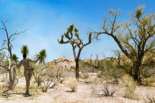 Bộ ảnh người mẫu khỏa thân giữa thiên nhiên