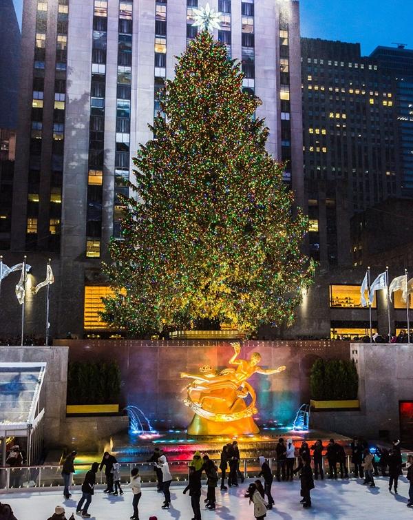 """Ngước nhìn những cây thông Noel """"đẹp khủng khiếp"""" trên thế giới"""