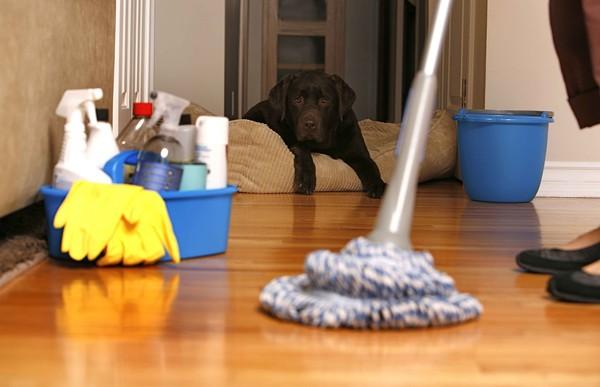 Tổng hợp mẹo vặt giúp bạn luôn nhàn hạ khi dọn nhà