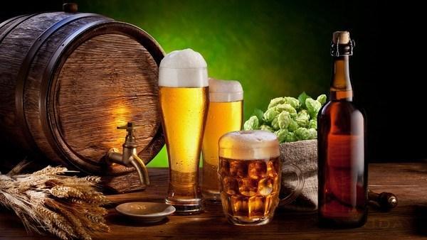 Phân loại bia – phức tạp và tinh tế trên từng loại