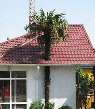 Những ngôi nhà bạn cần tránh xa nếu muốn sống an toàn