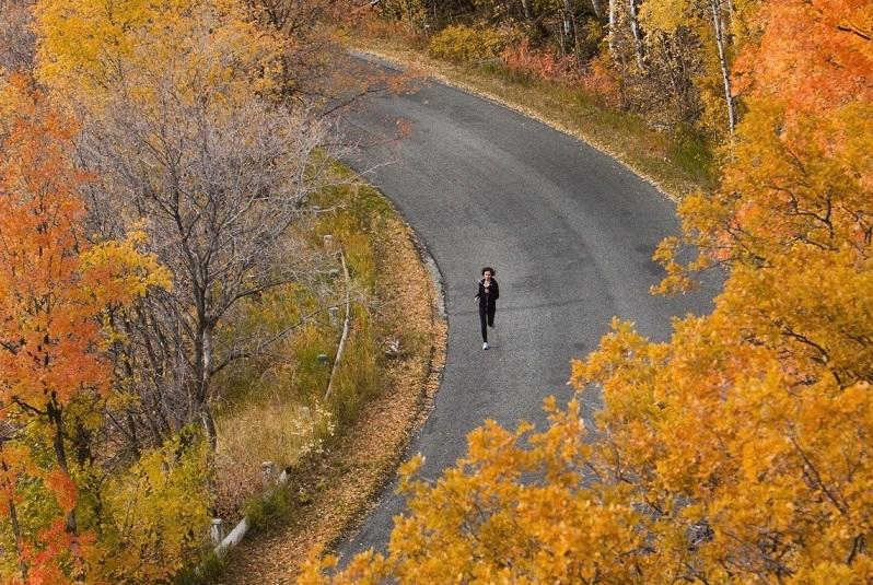 Hình ảnh mùa thu đẹp nao lòng trên khắp thế giới