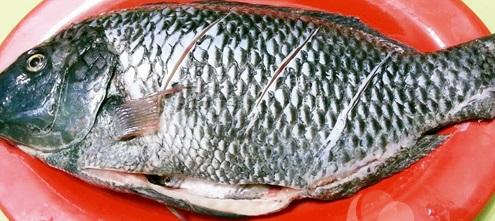 Hấp dẫn món cá rô phi rim xì dầu đậm đà, ngon cơm
