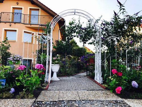 Biến 600 m2 đất sỏi đá thành vườn hồng đủ màu