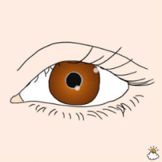 Tự chẩn đoán sức khỏe qua dấu hiệu bất thường từ đôi mắt